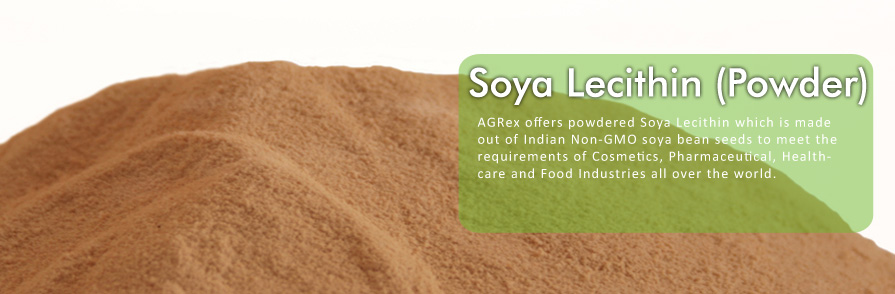 Soya Lecithin (Powder)